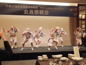 TOKUSHIMA 021